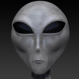 Zeta Reticulan Alien Face Closeup